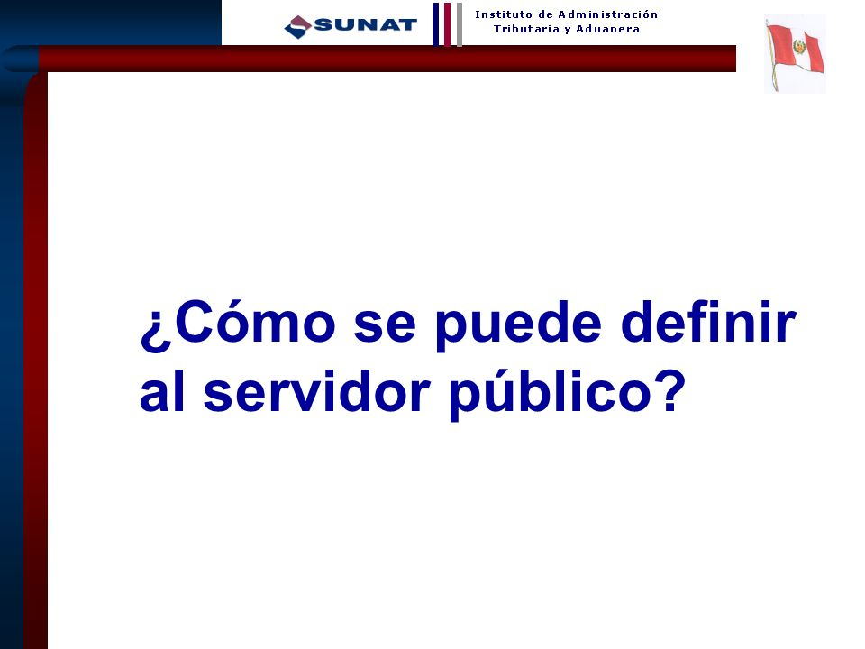 ¿Cómo se puede definir al servidor público