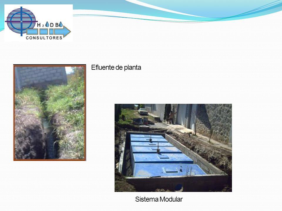 Efluente de planta Sistema Modular