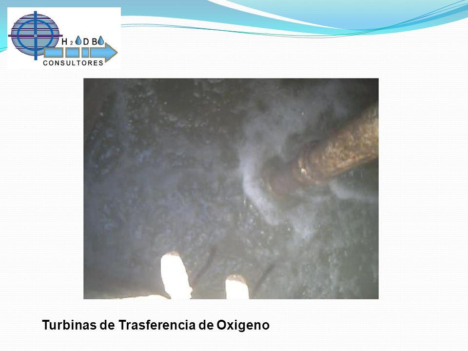 Turbinas de Trasferencia de Oxigeno