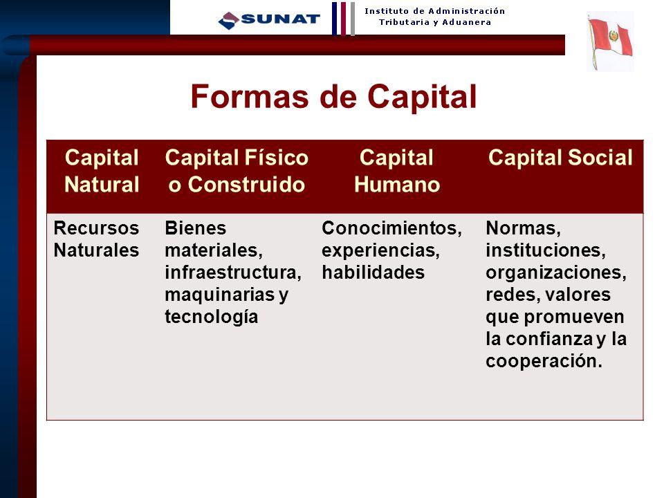 Capital Físico o Construido