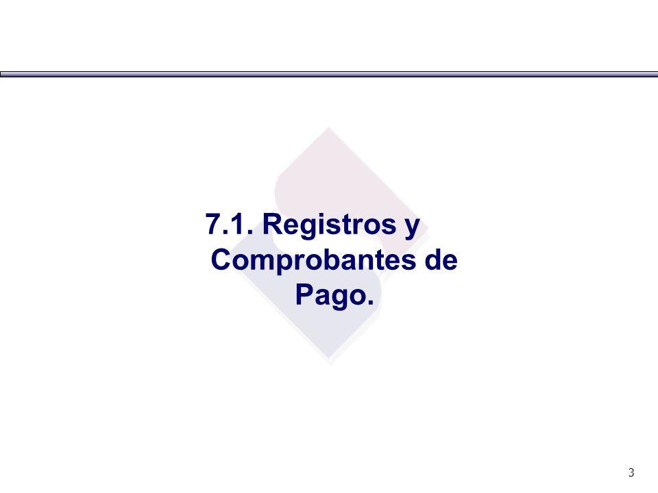 7.1. Registros y Comprobantes de Pago.