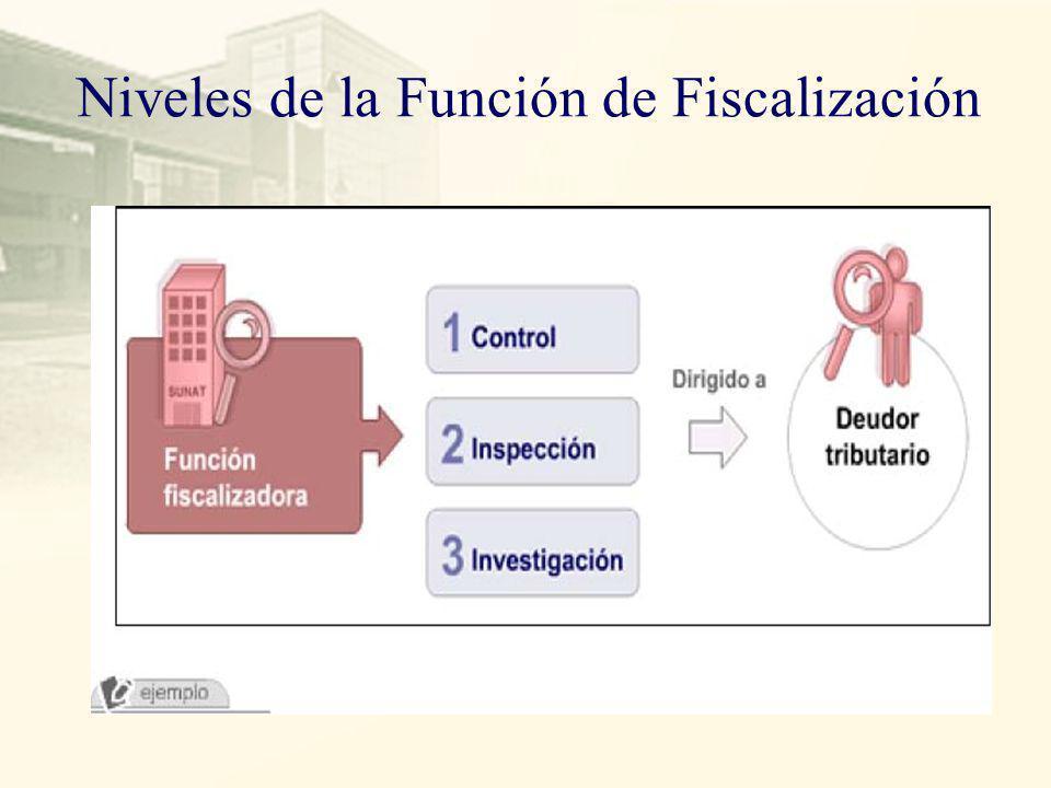 Niveles de la Función de Fiscalización