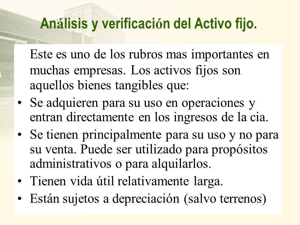 Análisis y verificación del Activo fijo.