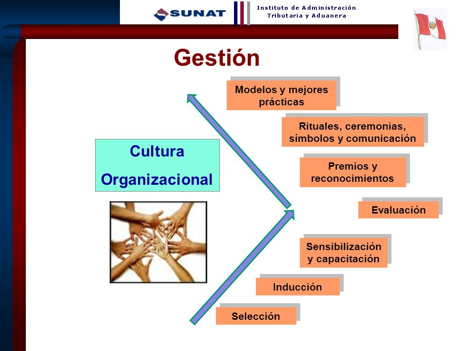 Gestión Cultura Organizacional Modelos y mejores prácticas