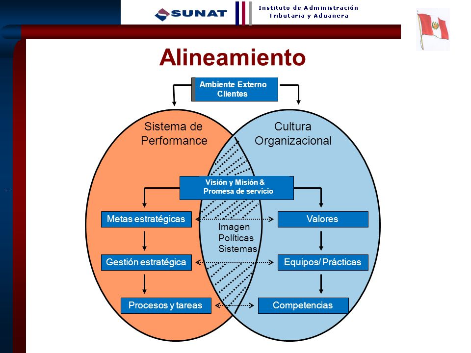 Alineamiento Sistema de Performance Cultura Organizacional
