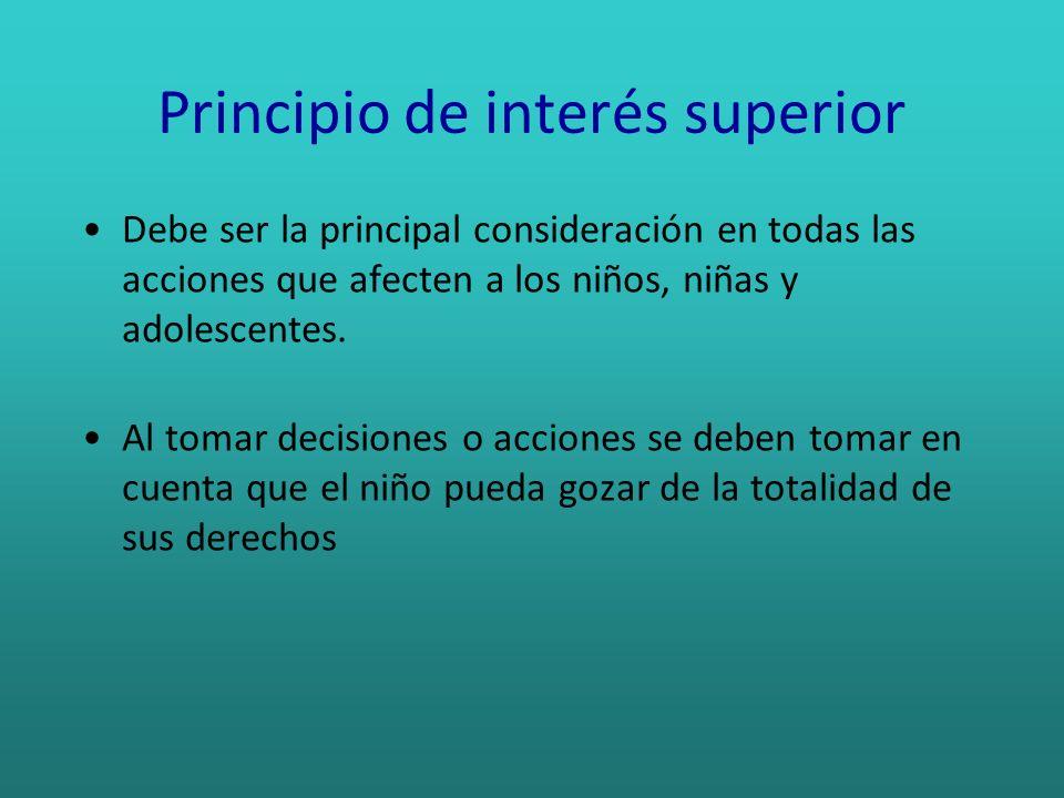 Principio de interés superior