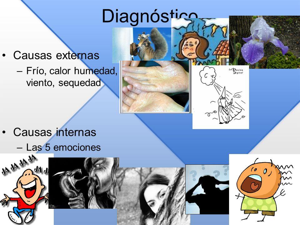 Diagnóstico Causas externas Causas internas