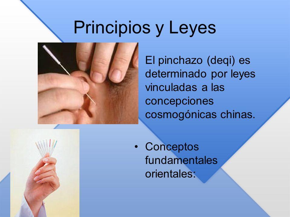 Principios y Leyes El pinchazo (deqi) es determinado por leyes vinculadas a las concepciones cosmogónicas chinas.