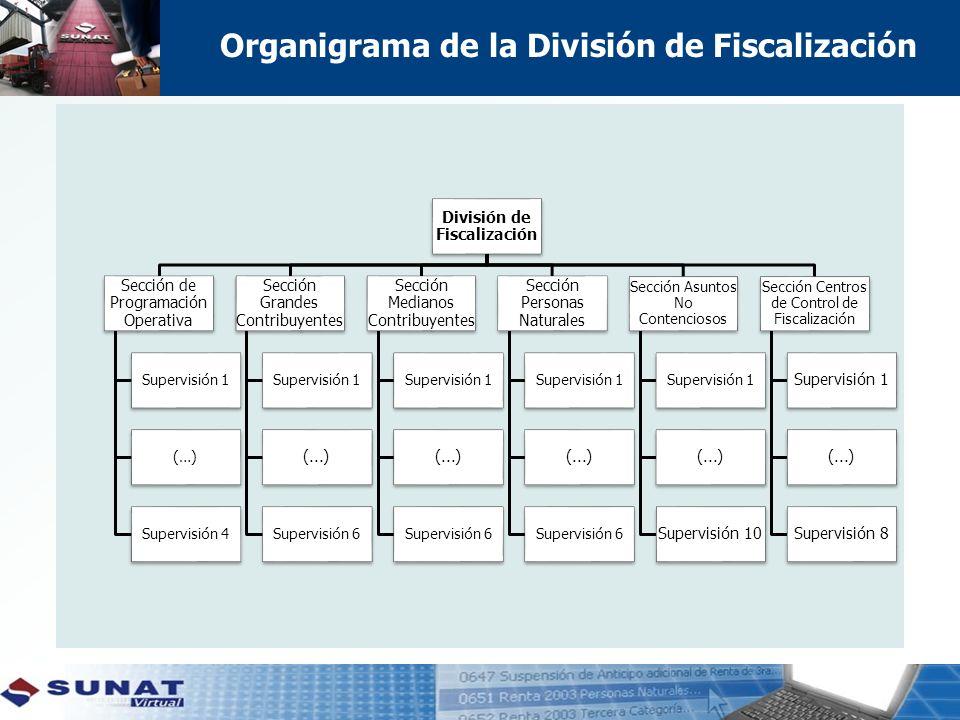 Organigrama de la División de Fiscalización
