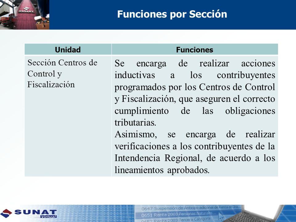 Funciones por Sección Unidad. Funciones. Sección Centros de Control y Fiscalización.