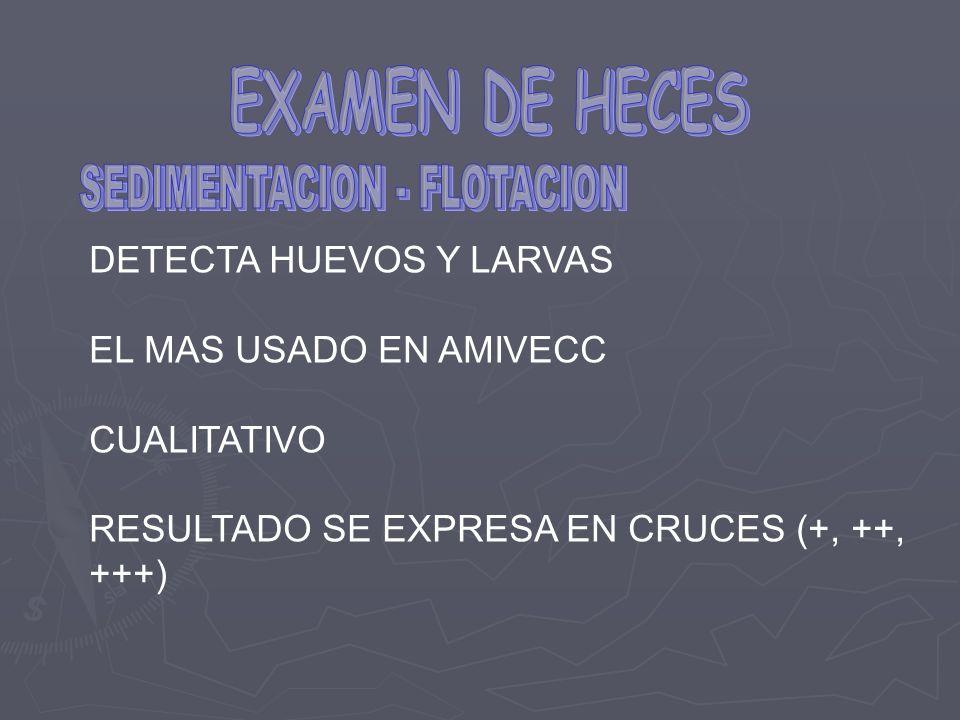 SEDIMENTACION - FLOTACION