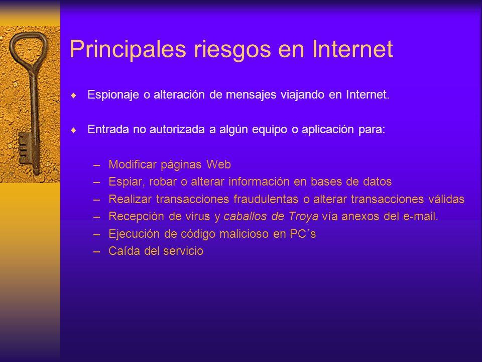Principales riesgos en Internet