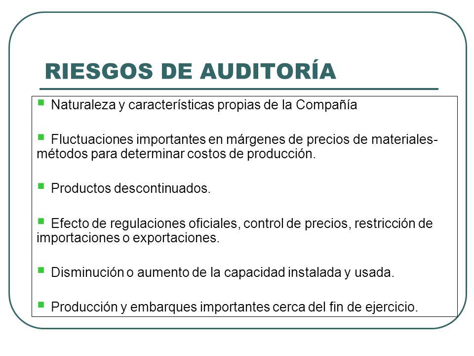 RIESGOS DE AUDITORÍA Naturaleza y características propias de la Compañía.