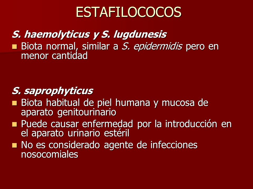 ESTAFILOCOCOS S. haemolyticus y S. lugdunesis
