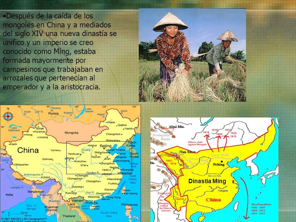 Después de la caída de los mongoles en China y a mediados del siglo XIV una nueva dinastía se unifico y un imperio se creo conocido como Ming, estaba formada mayormente por campesinos que trabajaban en arrozales que pertenecían al emperador y a la aristocracia.