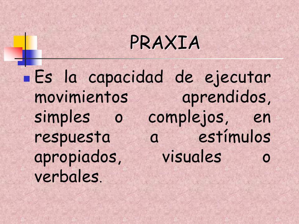 PRAXIA Es la capacidad de ejecutar movimientos aprendidos, simples o complejos, en respuesta a estímulos apropiados, visuales o verbales.