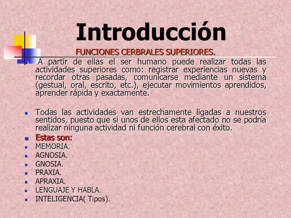 FUNCIONES CERBRALES SUPERIORES.