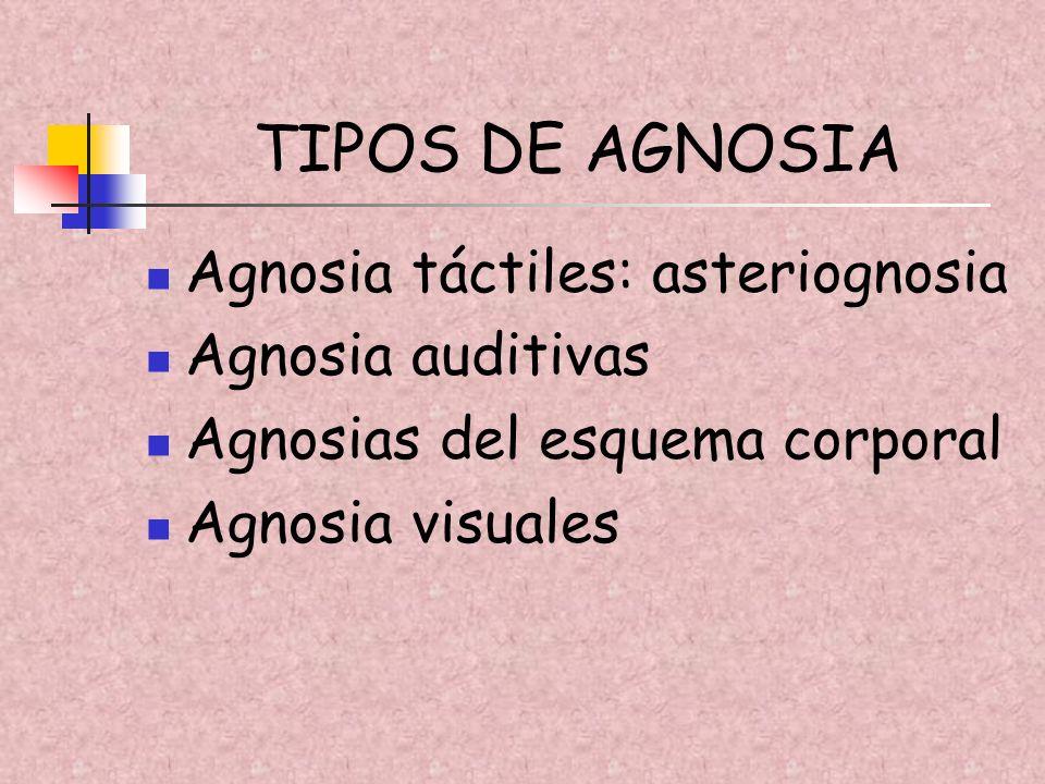 TIPOS DE AGNOSIA Agnosia táctiles: asteriognosia Agnosia auditivas