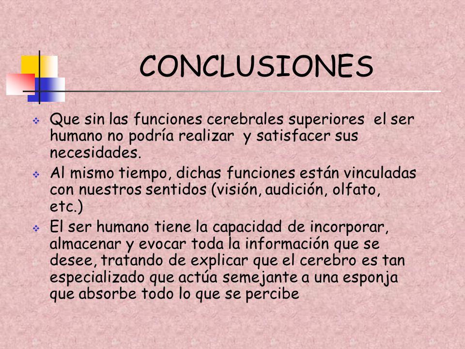 CONCLUSIONES Que sin las funciones cerebrales superiores el ser humano no podría realizar y satisfacer sus necesidades.