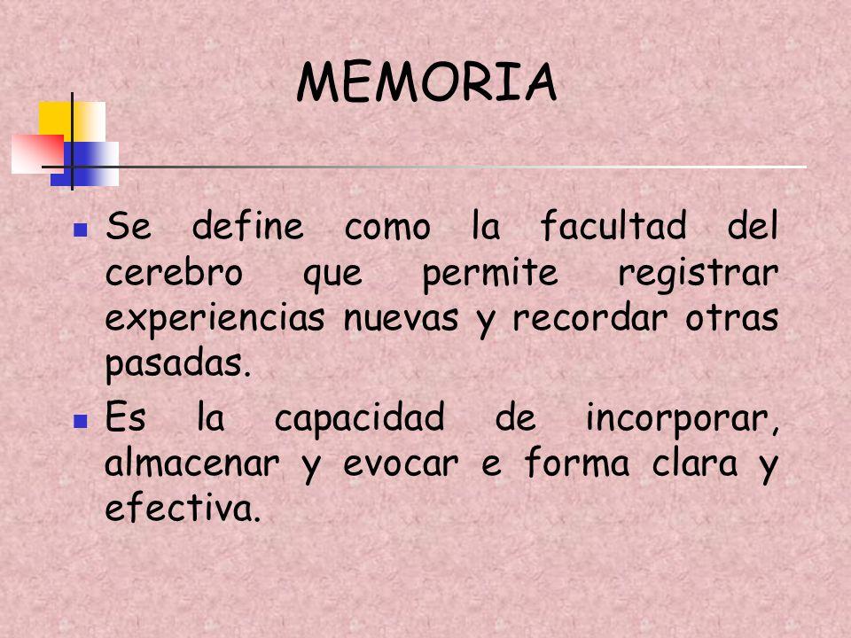 MEMORIA Se define como la facultad del cerebro que permite registrar experiencias nuevas y recordar otras pasadas.