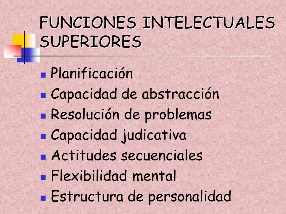 FUNCIONES INTELECTUALES SUPERIORES