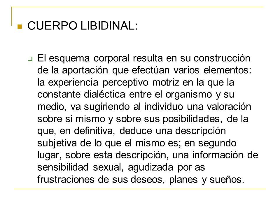 CUERPO LIBIDINAL: