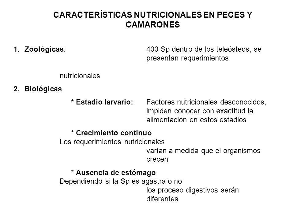 CARACTERÍSTICAS NUTRICIONALES EN PECES Y CAMARONES