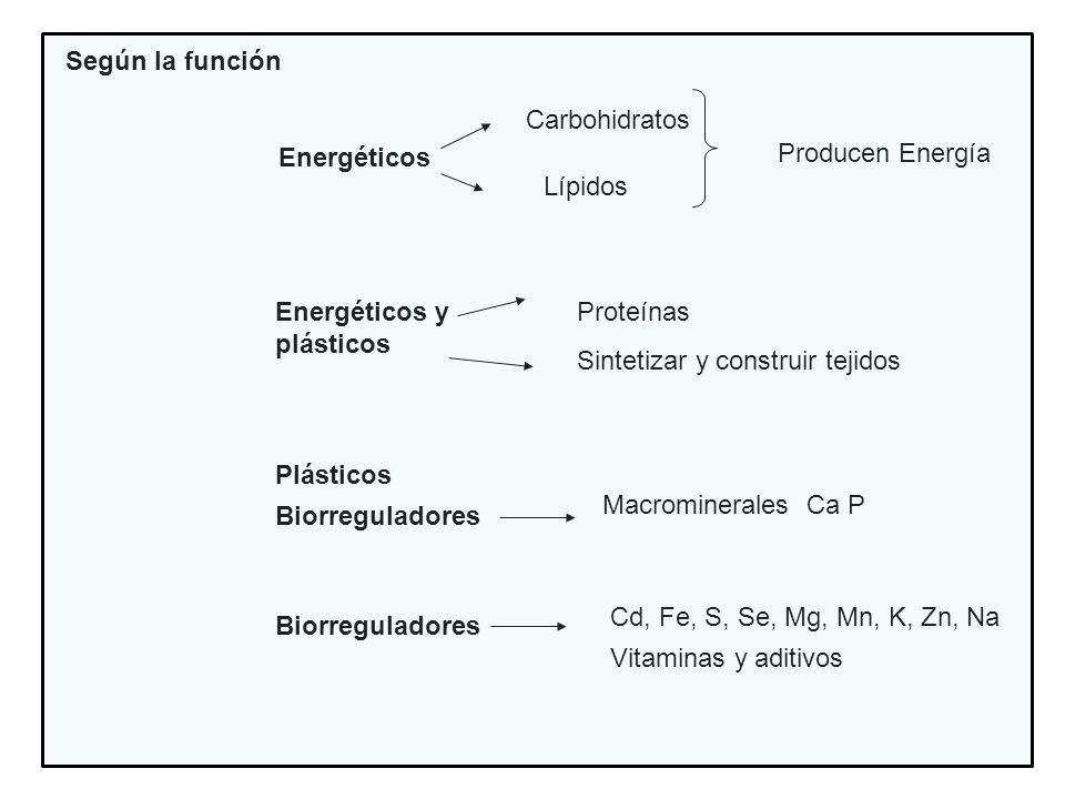 Según la funciónEnergéticos. Carbohidratos. Producen Energía. Lípidos. Energéticos y plásticos. Proteínas.