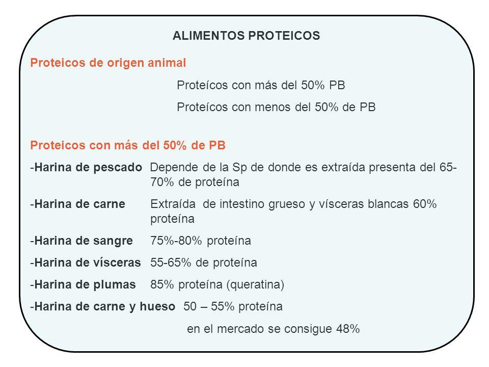 ALIMENTOS PROTEICOS Proteicos de origen animal. Proteícos con más del 50% PB. Proteícos con menos del 50% de PB.