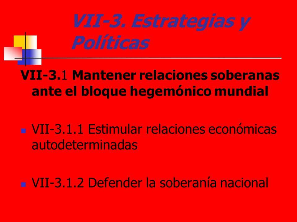 VII-3. Estrategias y Políticas