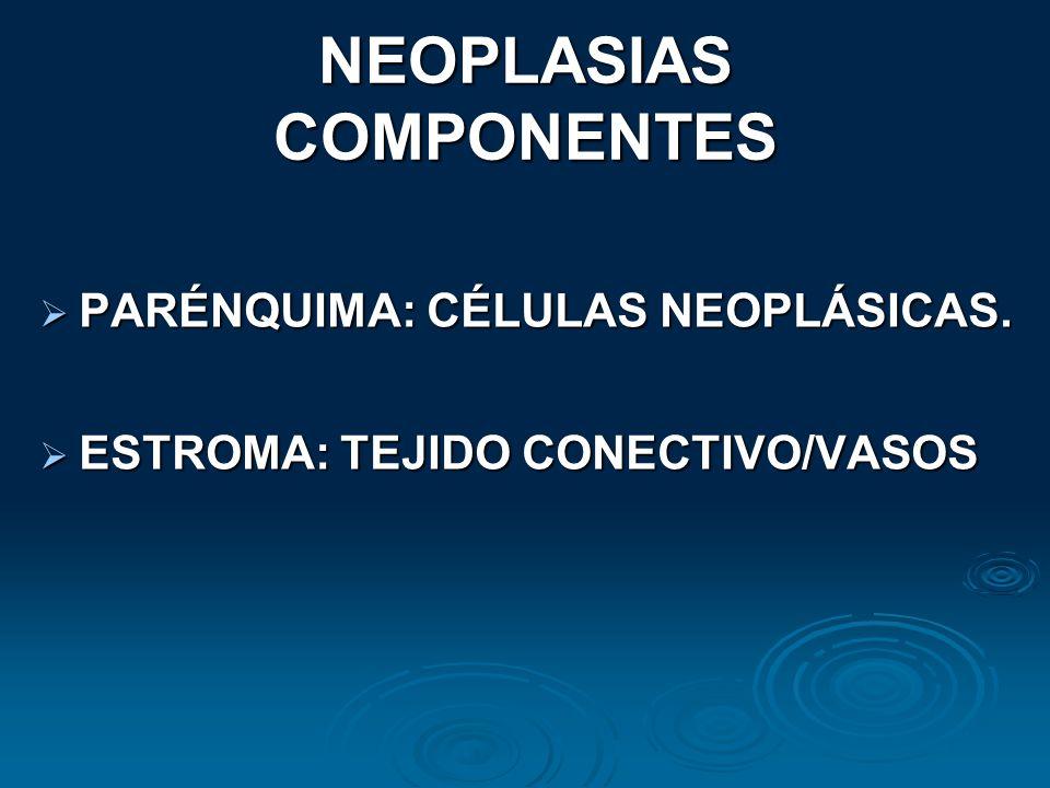 NEOPLASIAS COMPONENTES