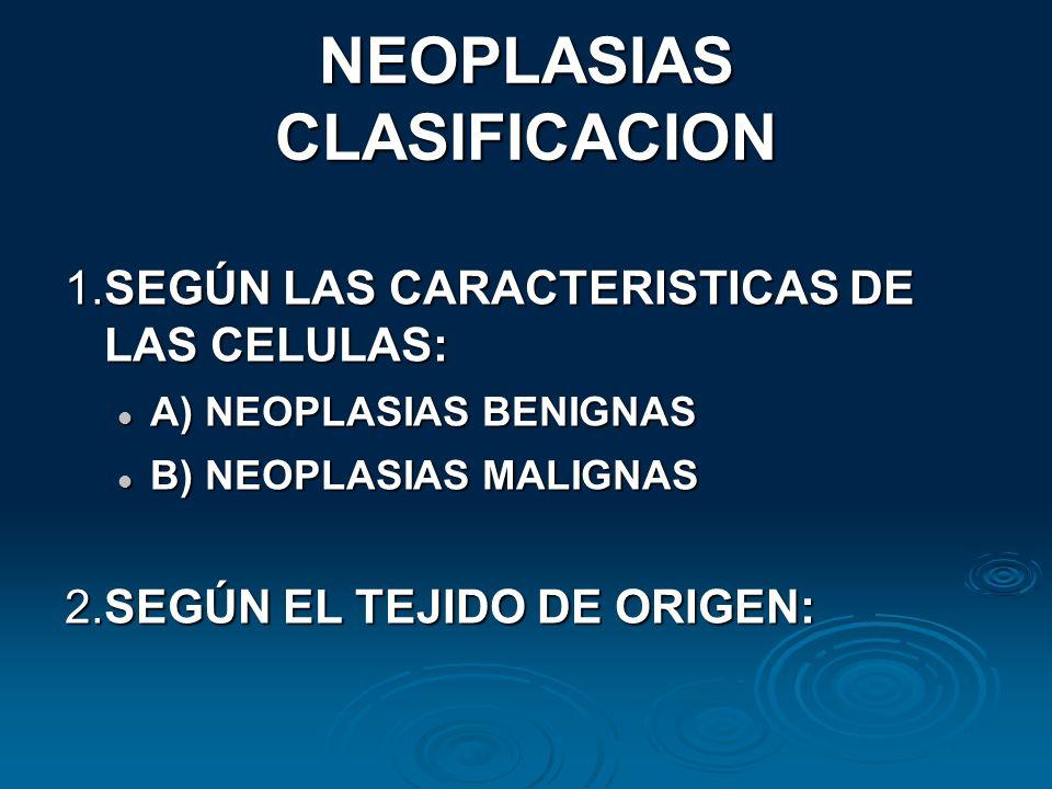 NEOPLASIAS CLASIFICACION