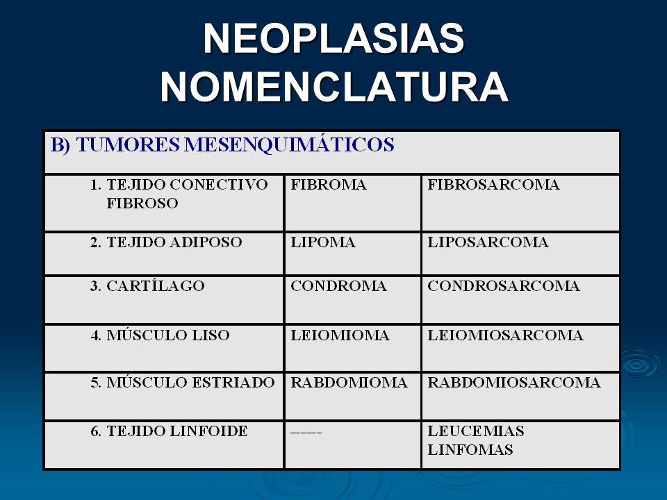 NEOPLASIAS NOMENCLATURA