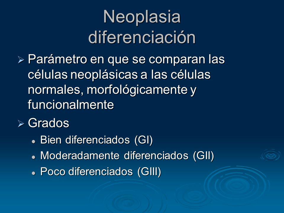 Neoplasia diferenciación