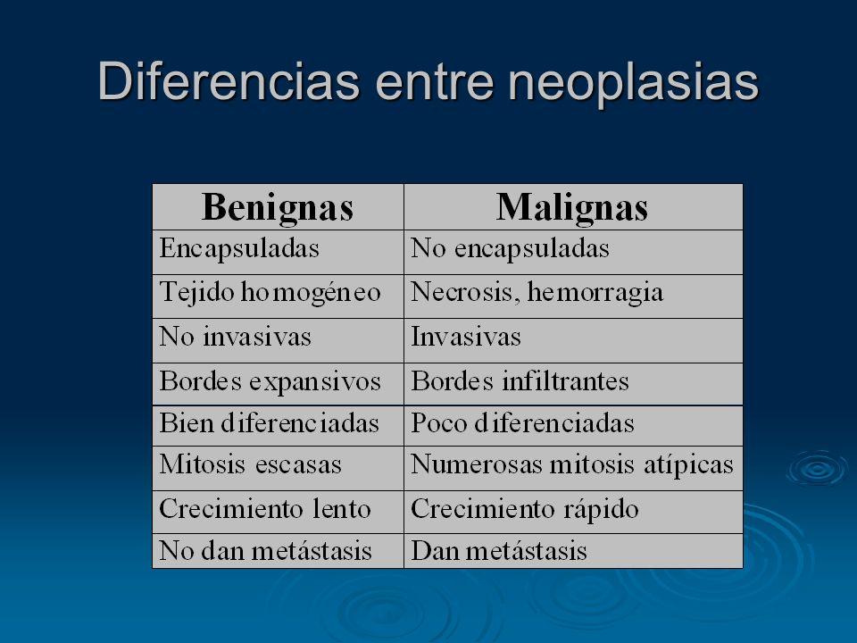 Diferencias entre neoplasias