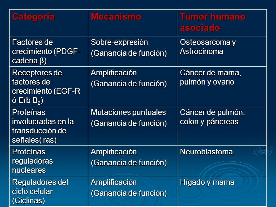 Categoría Mecanismo Tumor humano asociado