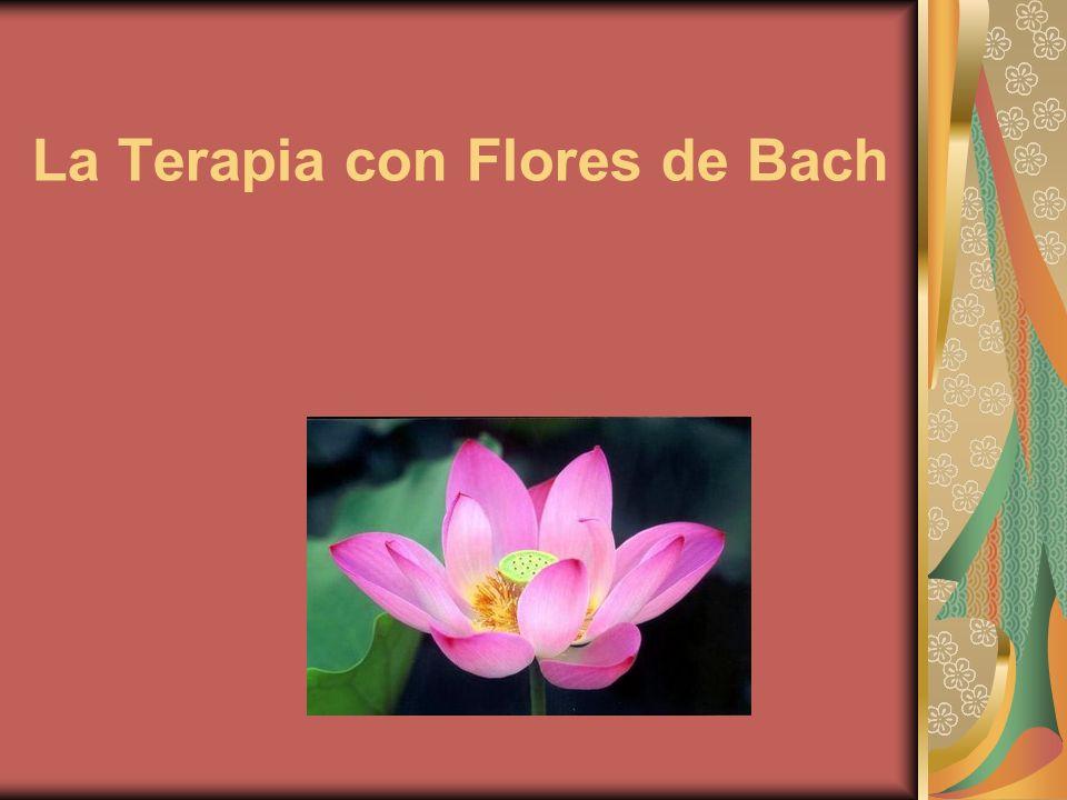 La Terapia con Flores de Bach