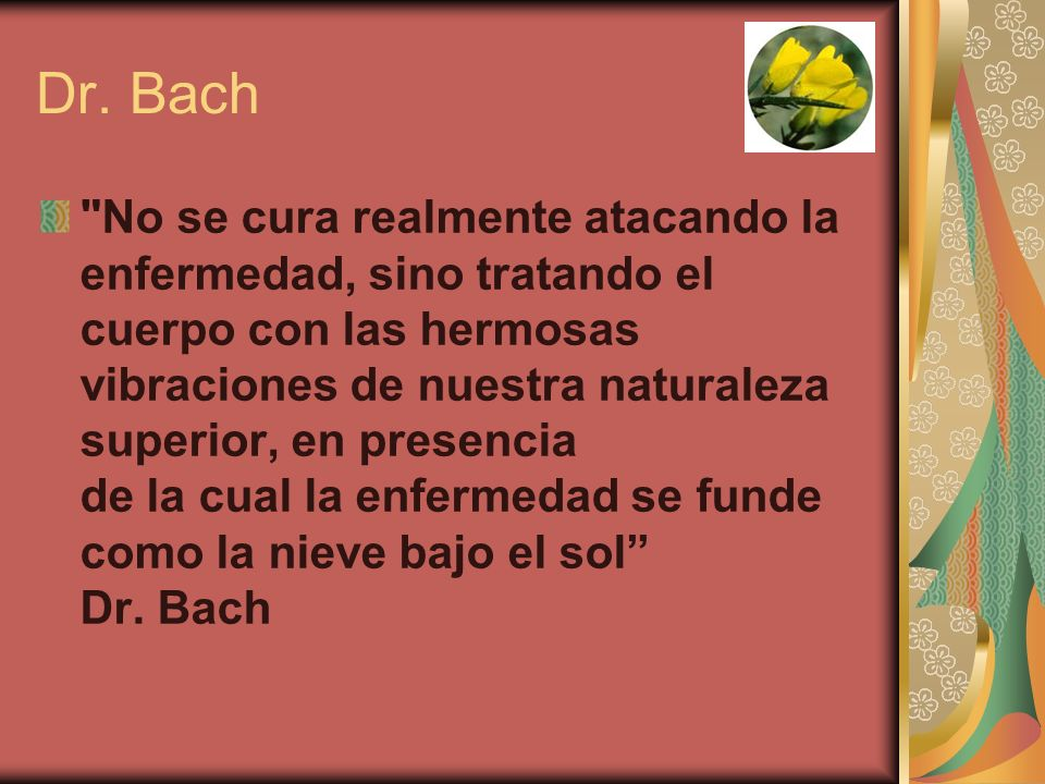 Dr. Bach