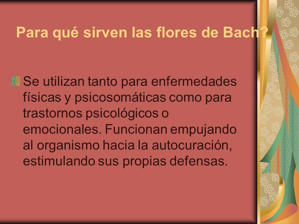 Para qué sirven las flores de Bach
