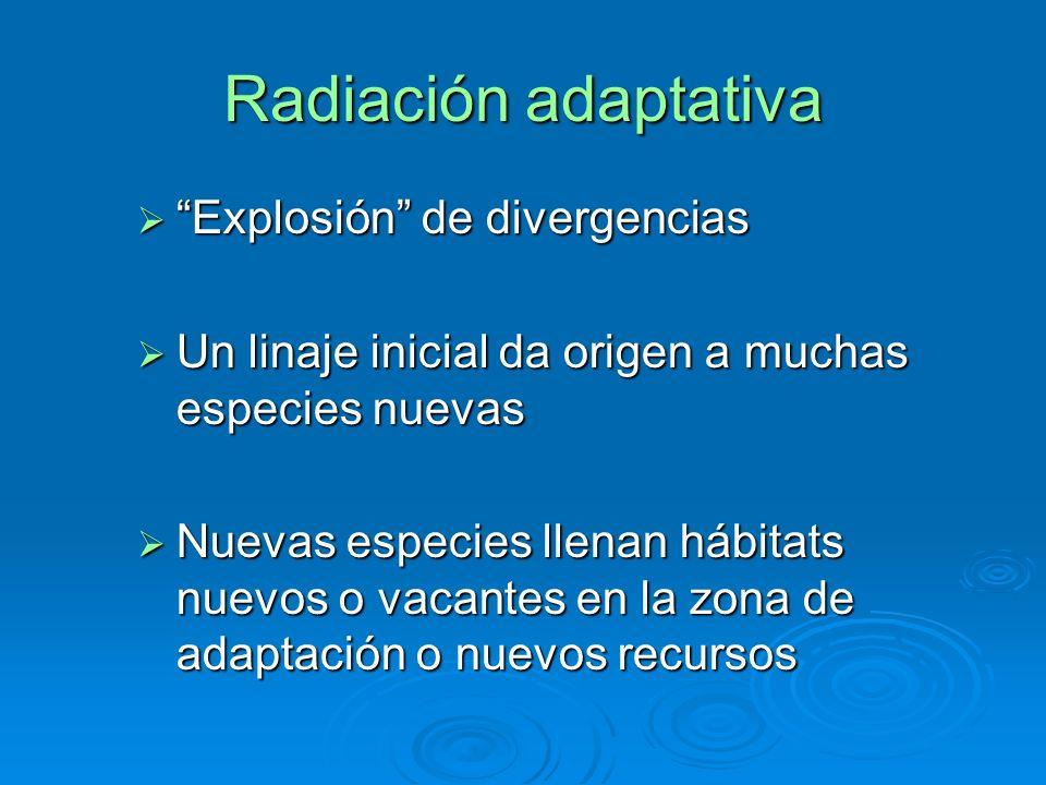 Radiación adaptativa Explosión de divergencias