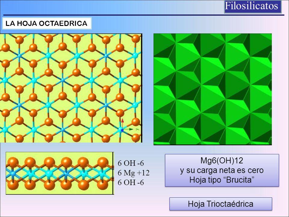 Filosilicatos Mg6(OH)12 6 OH -6 y su carga neta es cero 6 Mg +12