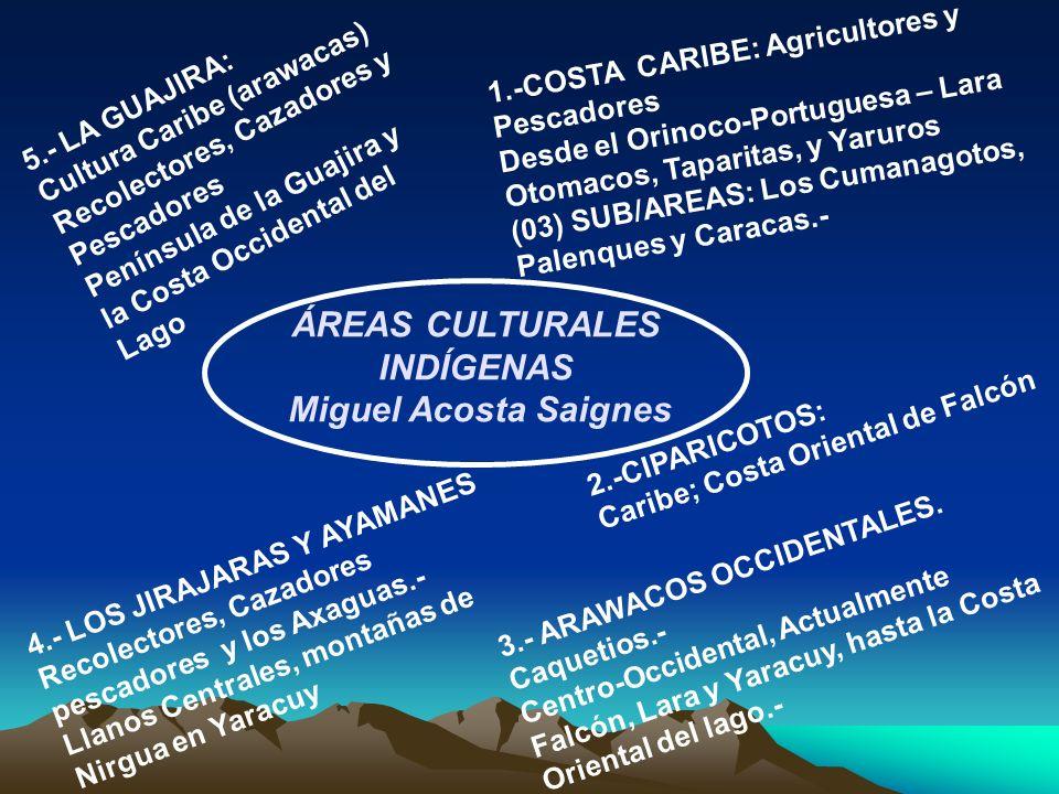 ÁREAS CULTURALES INDÍGENAS Miguel Acosta Saignes