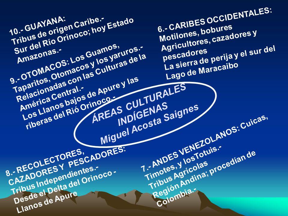 INDÍGENAS Miguel Acosta Saignes
