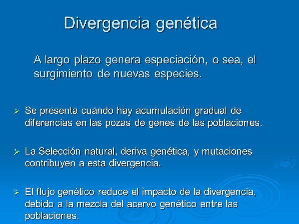 Divergencia genética A largo plazo genera especiación, o sea, el surgimiento de nuevas especies.