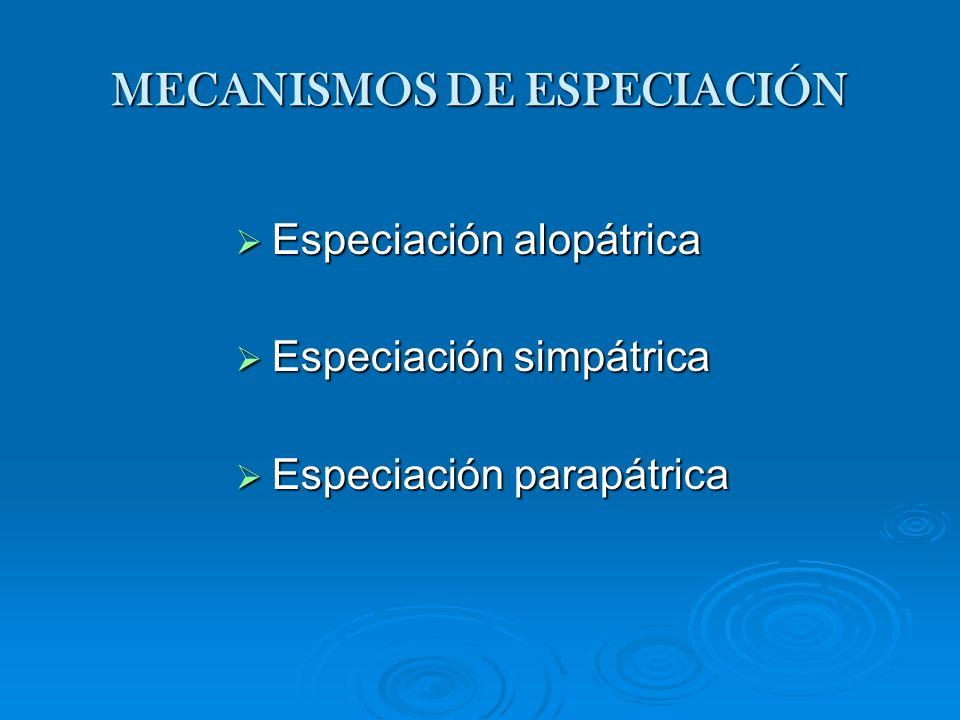 MECANISMOS DE ESPECIACIÓN