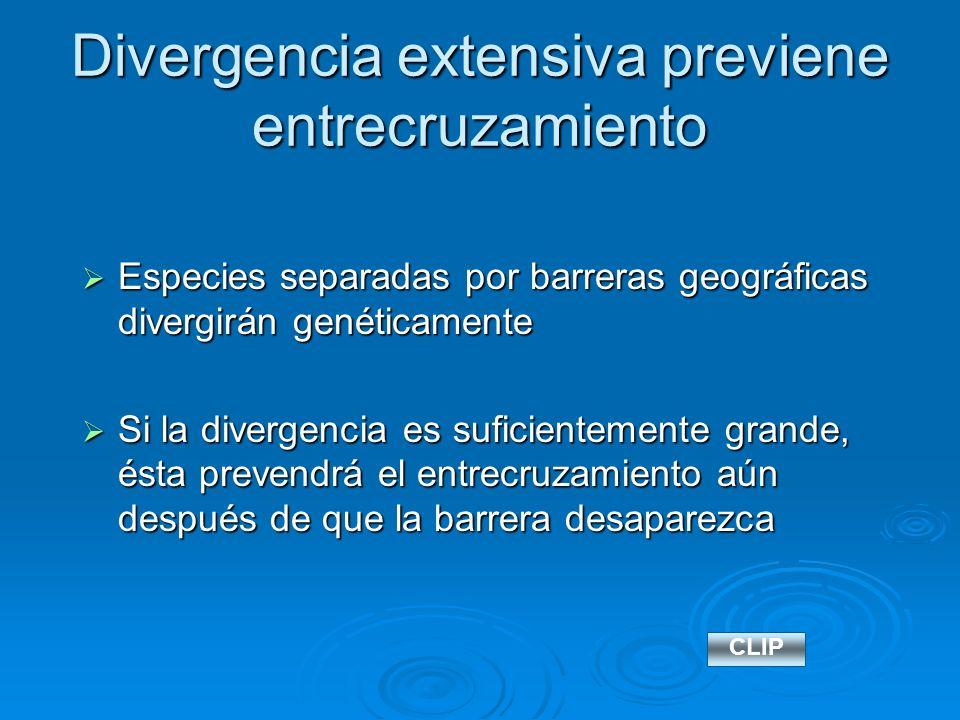 Divergencia extensiva previene entrecruzamiento