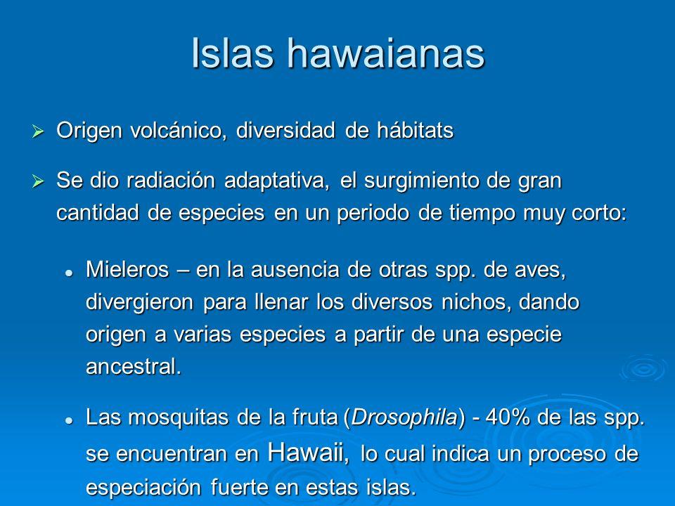 Islas hawaianas Origen volcánico, diversidad de hábitats
