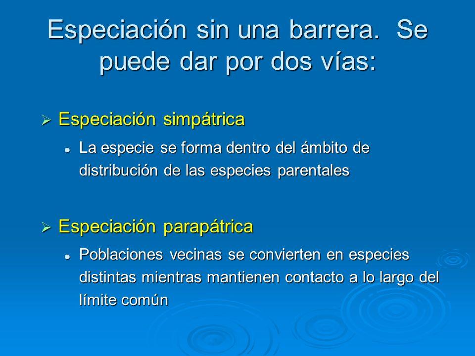 Especiación sin una barrera. Se puede dar por dos vías:
