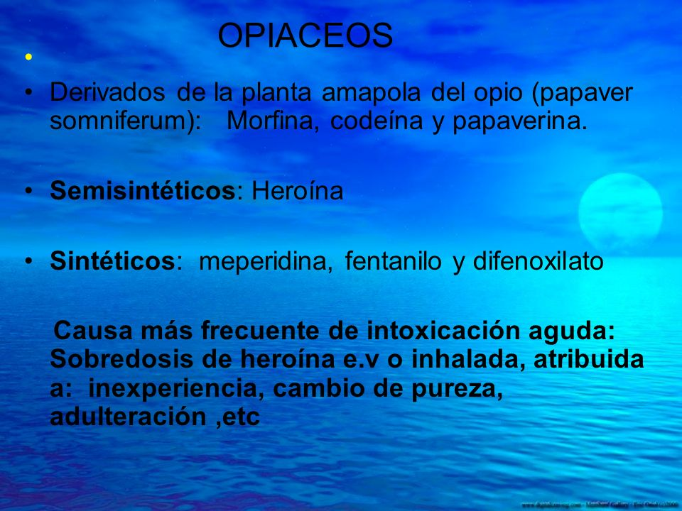OPIACEOS Derivados de la planta amapola del opio (papaver somniferum): Morfina, codeína y papaverina.