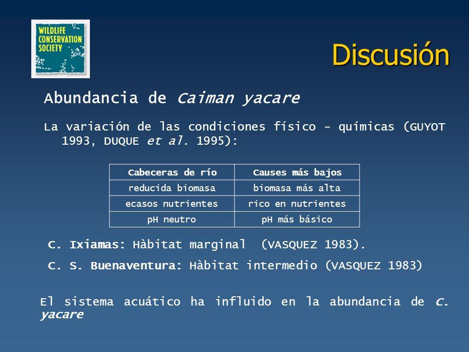 Discusión Abundancia de Caiman yacare